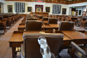 Otter in the Representatives Chamber